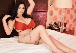 Marie-stéphane escort girls in Palm River-Clair Mel Florida